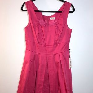 Calvin Klein pink fit and flare dress.